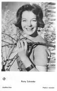 1950's - Fleurs