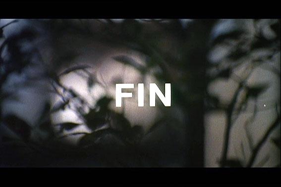 DVD_241