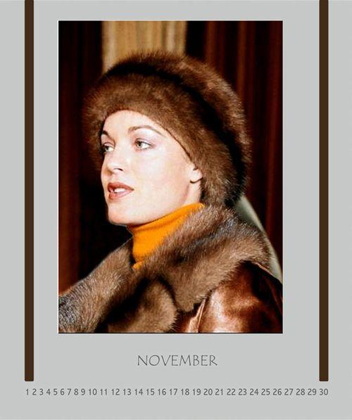 311 - November 2012