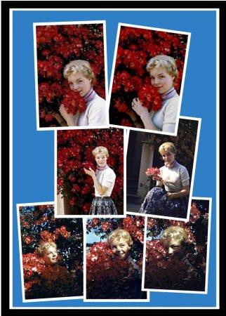 2012-10-30 - Portrait 50