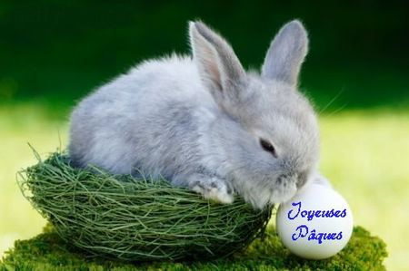 Lapin-paques