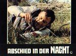 Vieux fusil - LC Allemagne (5)