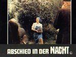 Vieux fusil - LC Allemagne (15)