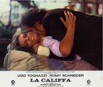 Califfa - LC France (4)