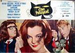 Pussycat - LC Italie (3)