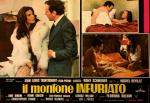 Mouton - LC Italie (6)