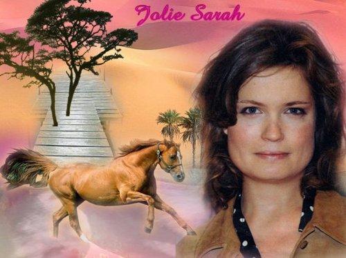 Sarahmontage25